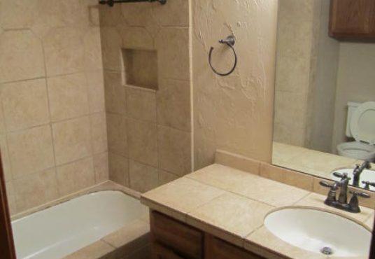 11421 Springhollow Dr 1101 Bathroom