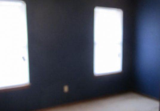 732_Briarwood_Dr-Master_Bedroom