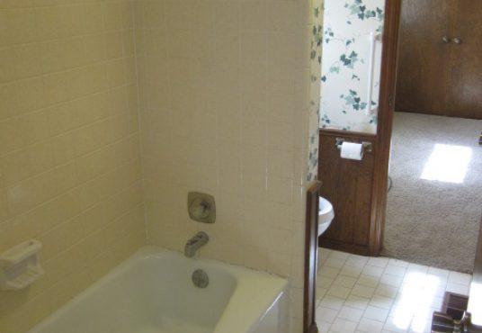 Guest Bathroom II