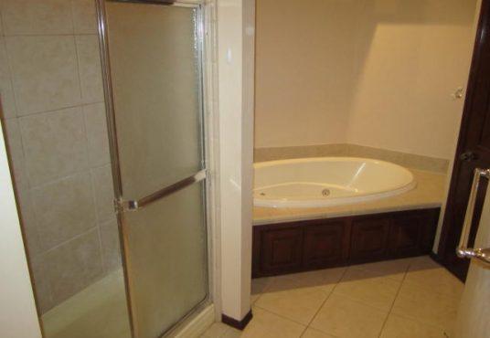 Master Bathroom II